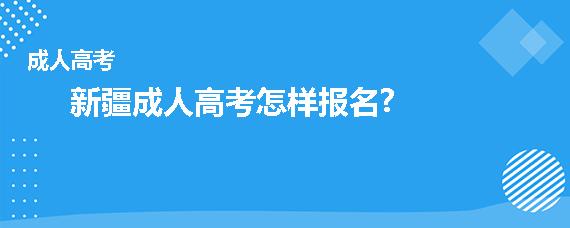 新疆成人高考怎样报名