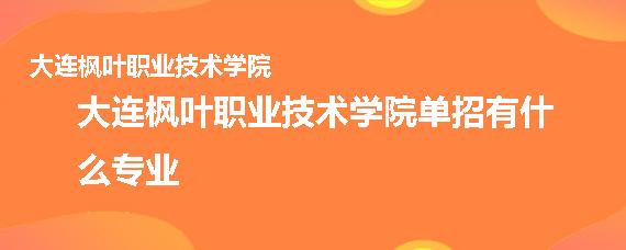 大连枫叶职业技术学院单招有什么专业