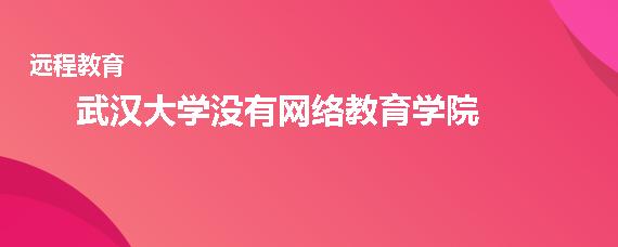 武汉大学有网络教育学院吗