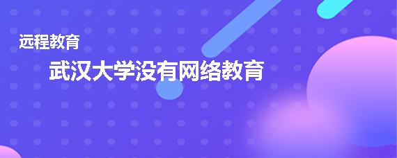 武汉大学有网络教育吗